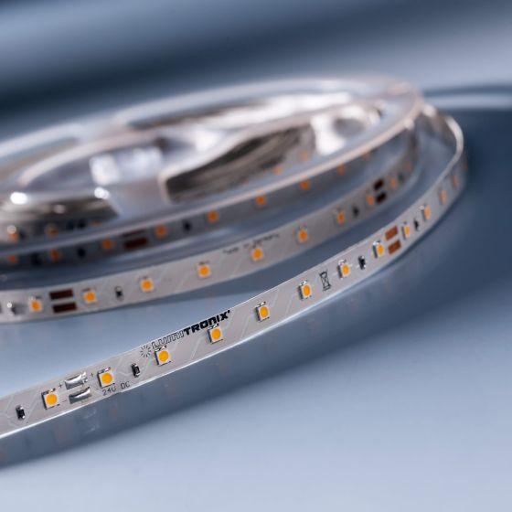 LumiFlex 350 Economy LED Strip cold white 6000K 2125lm 24V 70 LEDs/m 16ft/5m reel (135lm & 1.5W/ft)