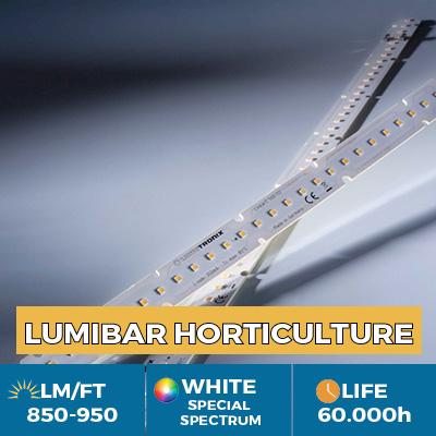 Professional LinearZ LED module Nichia Optisolis, White Solar CRI98  , Plug & Play Zhaga, 950 lm / ft