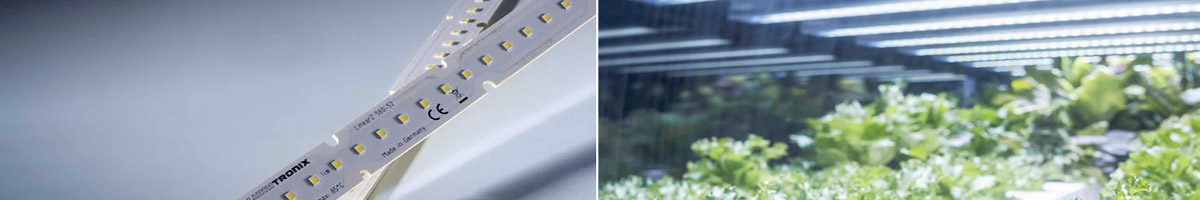 High performance Horticulture lighting with LinearZ LED Modules